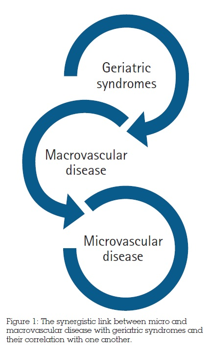 The synergistic link between micro and macrovascular disease with geriatric syndromes and their correlation with one another