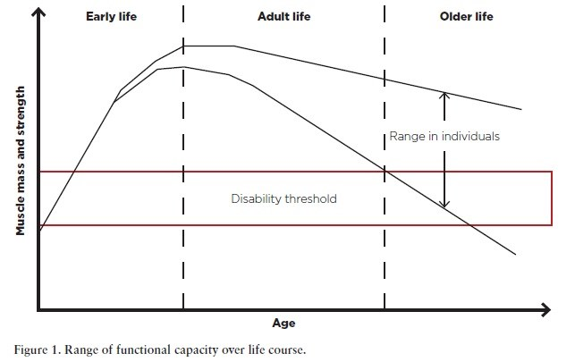 Figure 1. Range of functional capacity over life course
