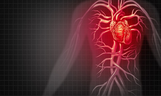 Make heart failure a national priority to address Covid backlog, say cardiologists