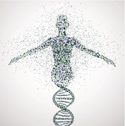 All in the DNA: genetic testing, future health risks